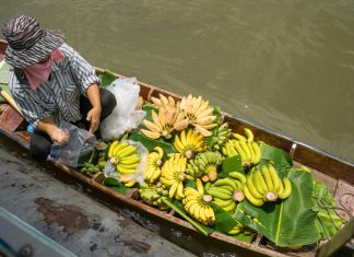 海椰寺水上市場Wat Don Wai Floating Market