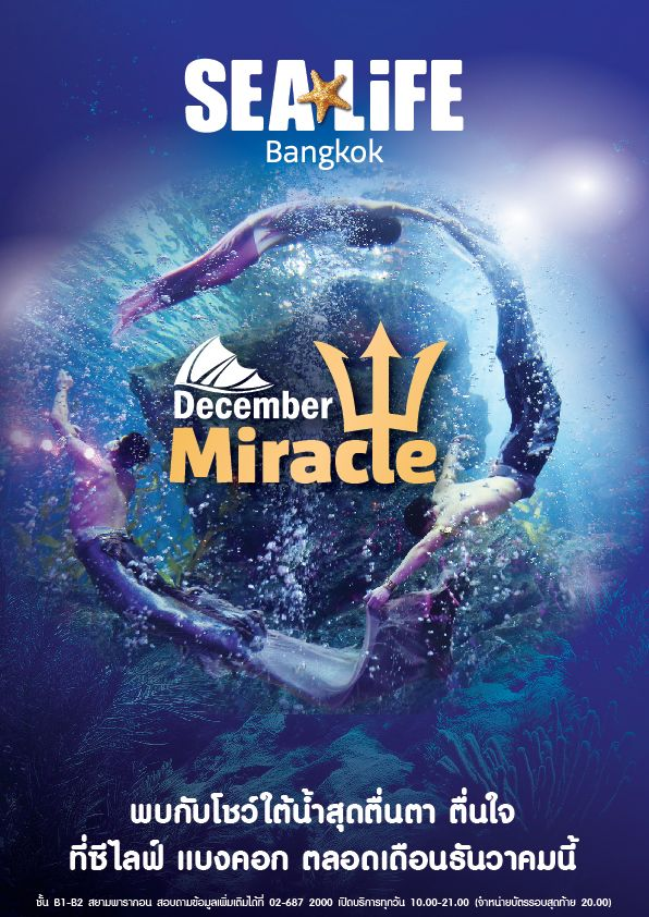 sea-life-bangkok-mermaid-kingdom